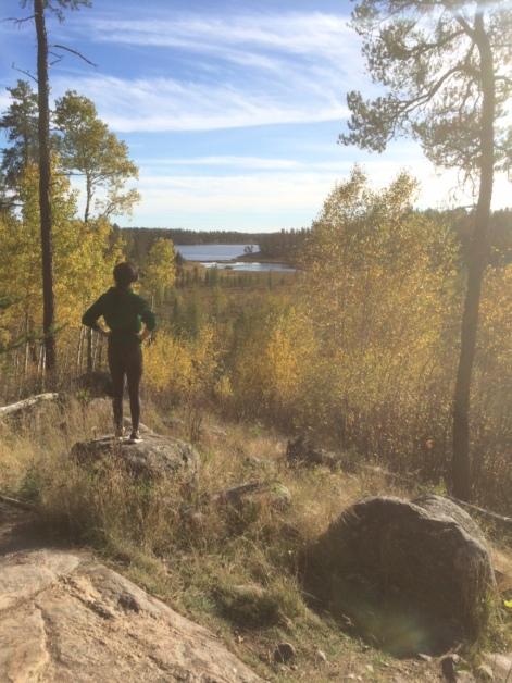 View over McGillivary Lake