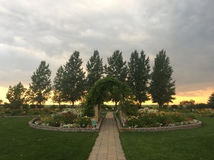 Daylilly Gardens